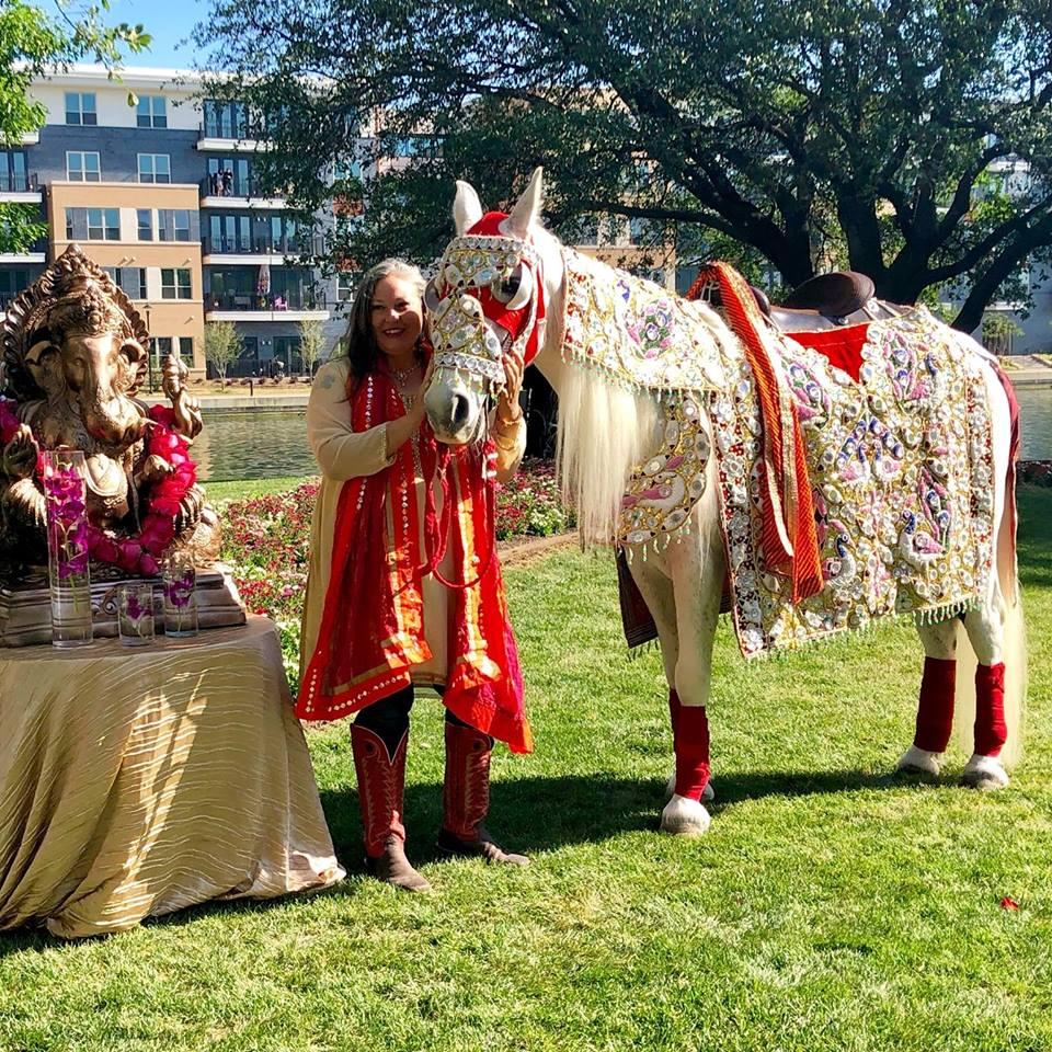 Baraat Horse Dallas